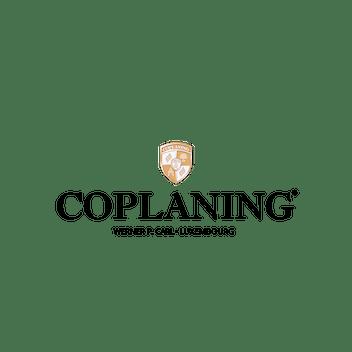 CoPlaning